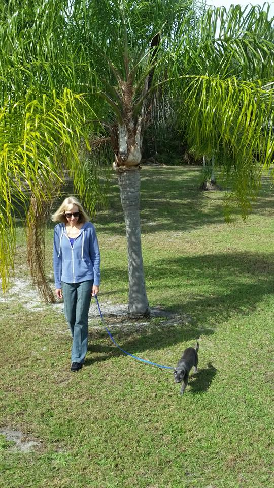 Walking Zeus in Fort Pierce, FL